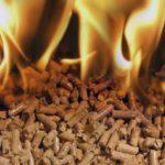 Brennstoffe: Beim Einkaufen Geld sparen
